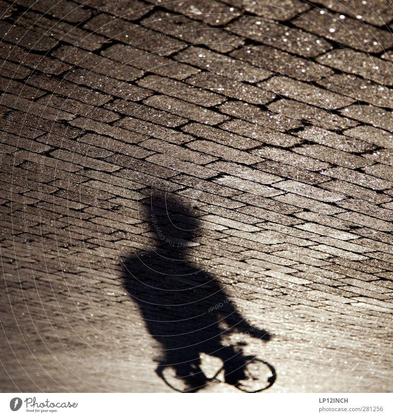 Shadow Biker Mensch Kind Mann Jugendliche Erwachsene dunkel Straße Leben Sport Bewegung Wege & Pfade 18-30 Jahre Körper Fahrrad Angst maskulin