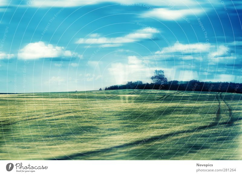 Train To The Fields Himmel Natur blau grün Sommer Pflanze Baum Wolken schwarz Landschaft gelb Beleuchtung Feld Lebensmittel Eisenbahn Hügel