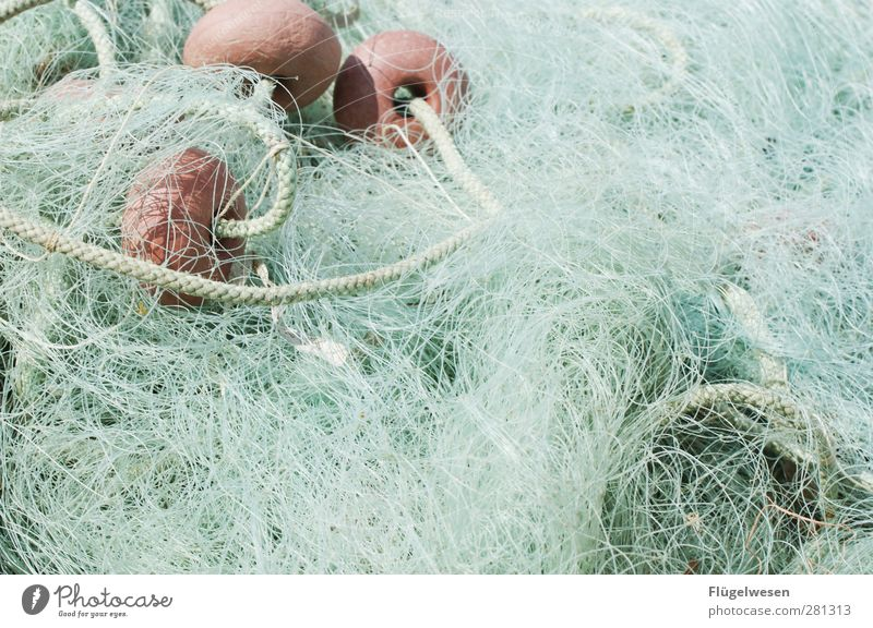 Nachhaltiger Fischfang Meer Küste See Lebensmittel Freizeit & Hobby Wellen Reinigen Fluss Seeufer Hafen Ostsee Schifffahrt Nordsee fangen