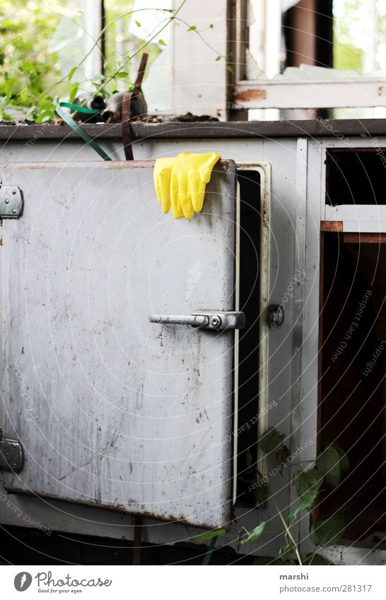 es hat sich ausgeputzt Wohnung Möbel Küche Natur Pflanze Sträucher dreckig Handschuhe Reinigen alt gebraucht Fabrik Kühlschrank Farbfoto Außenaufnahme Tag