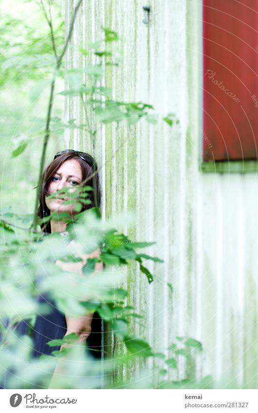 Es grünt so grün Mensch Frau Natur Pflanze Baum rot Blatt ruhig Wald Erwachsene Umwelt Fenster Leben feminin Kopf