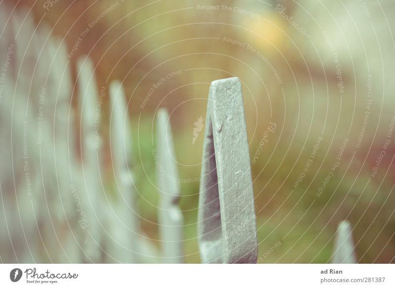 abgrenzung Natur Wiese Garten Park ästhetisch Zaun Zaunpfahl