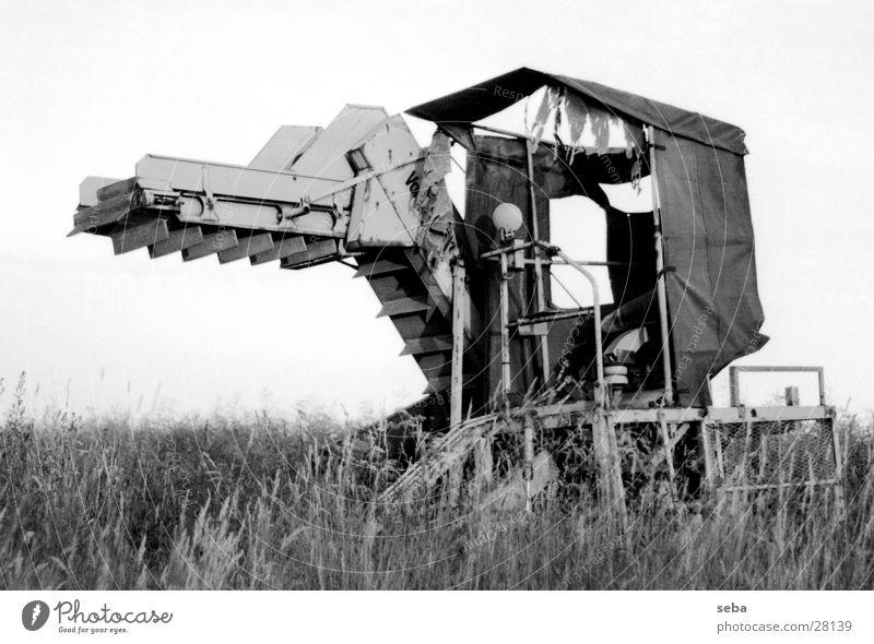 Erntemaschine weiß schwarz Feld Technik & Technologie Dorf Landwirtschaft Ernte Maschine Elektrisches Gerät