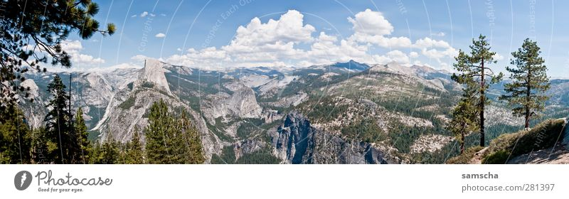 Yosemite Nationalpark Natur Ferien & Urlaub & Reisen Sommer Pflanze Landschaft Wald Ferne Berge u. Gebirge Freiheit Luft Horizont wandern Tourismus Ausflug