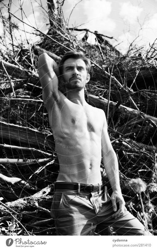 Portrait Mensch Natur Jugendliche schön Baum Erwachsene Umwelt Freiheit Junger Mann Mode Gesundheit 18-30 Jahre Körper Kraft Haut maskulin