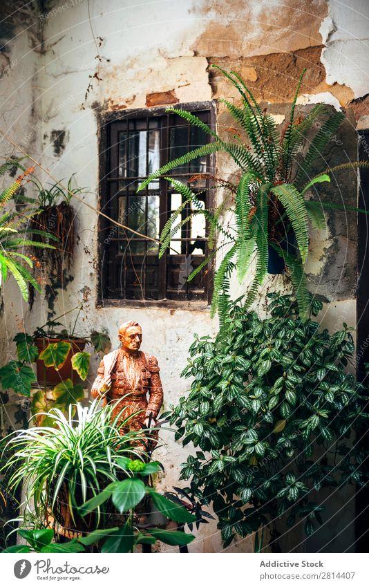 Typischer andalusischer Innenhof mit Brunnen und zahlreichen Pflanzen, Geranien und Nelken an den Wänden. Cordoba, Spanien heimwärts Florida Innenarchitektur