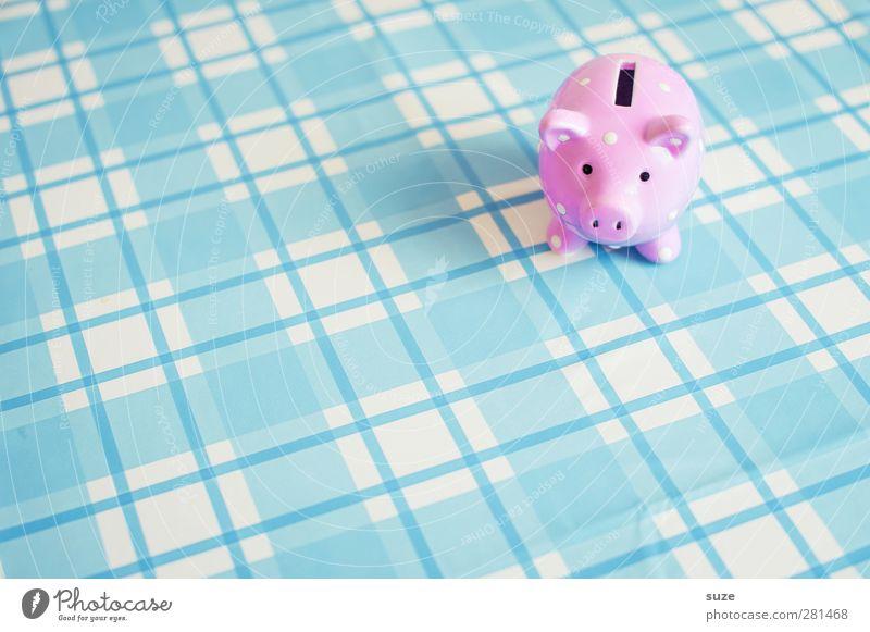 Kleine Sau blau Glück klein lustig rosa Design Armut Lifestyle Dekoration & Verzierung kaufen Geld niedlich Kunststoff Kitsch reich kariert
