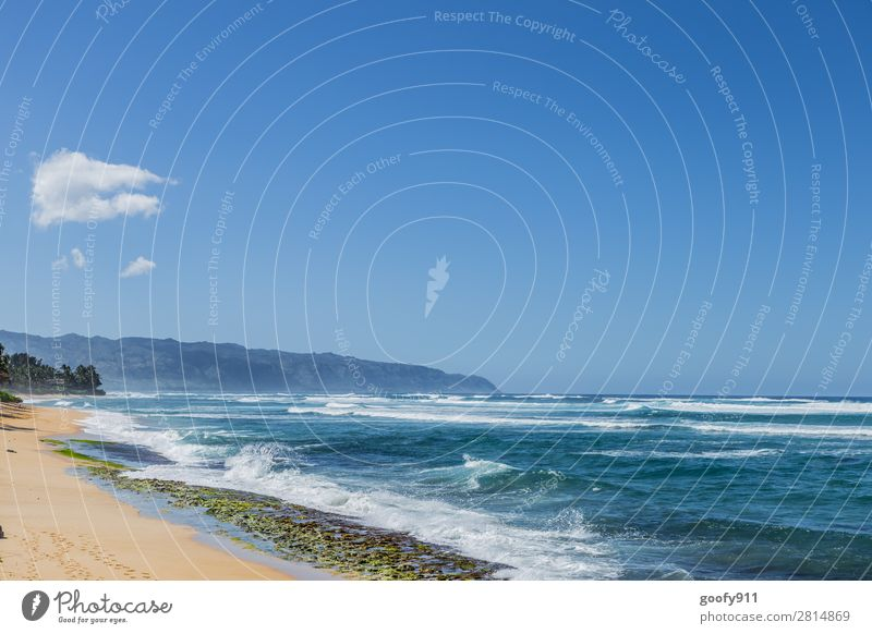 Entspannen Ferien & Urlaub & Reisen Tourismus Ausflug Abenteuer Ferne Freiheit Sonne Sonnenbad Strand Meer Insel Wellen Natur Landschaft Sand Wasser Himmel