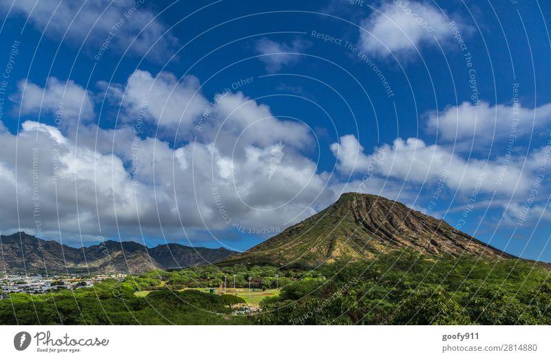 Landesinnere Oahu/Hawaii Ferien & Urlaub & Reisen Tourismus Ausflug Abenteuer Ferne Freiheit Expedition Sommer Insel Himmel Wolken Schönes Wetter Baum