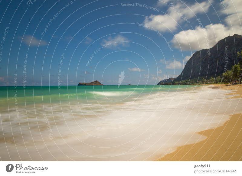 Die Seele baumeln lassen Ferien & Urlaub & Reisen Tourismus Ausflug Abenteuer Ferne Freiheit Sommer Sonne Sonnenbad Strand Meer Insel Wellen Natur Landschaft