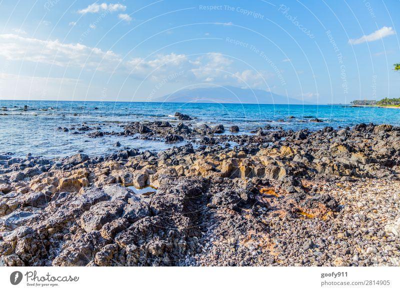 Steinige Küste Maui Ferien & Urlaub & Reisen Tourismus Ausflug Abenteuer Ferne Freiheit Strand Meer Insel Wellen Natur Landschaft Erde Wasser Himmel Horizont