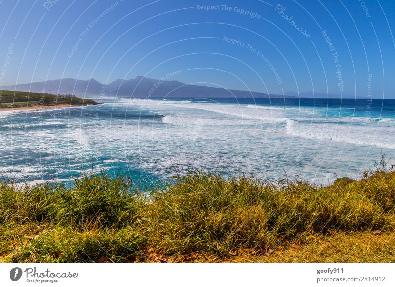 Ho'okipa Beach Maui Ferien & Urlaub & Reisen Tourismus Ausflug Abenteuer Ferne Freiheit Sommer Strand Meer Insel Wellen Natur Landschaft Wasser Himmel