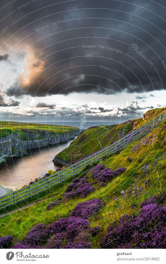 Tal zur Smoo Cave am Atlantik bei Durness in Schottland Natur Pflanze Wasser Landschaft Meer Blume Wolken Reisefotografie Umwelt Wege & Pfade Küste Tourismus