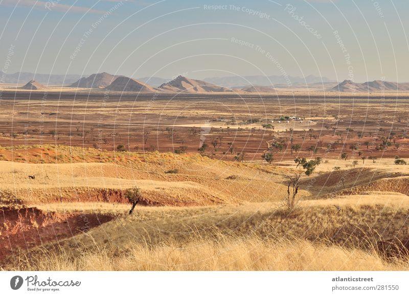 Namib Naukluft Park Namibia Natur Ferien & Urlaub & Reisen Einsamkeit Landschaft Erholung Ferne Berge u. Gebirge Wärme Gras Sand Stimmung Tourismus Abenteuer Schönes Wetter einzigartig Wüste