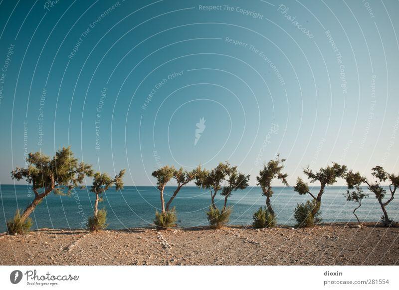 Parkplatz mit Meerblick Himmel Natur Ferien & Urlaub & Reisen Sommer Baum Sonne Landschaft Ferne Küste Wetter Klima Verkehr Insel Tourismus Schönes Wetter