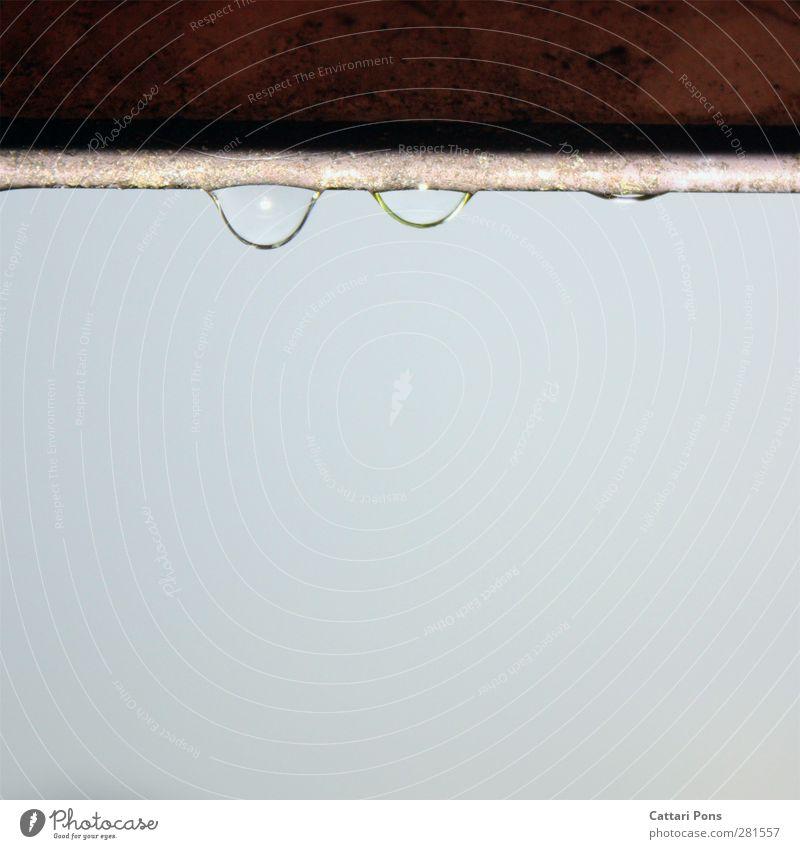 Tropfen Wasser kalt klein Regen natürlich frisch nass Wassertropfen einfach nah Flüssigkeit hängen Wolkenloser Himmel schlechtes Wetter Dachrinne