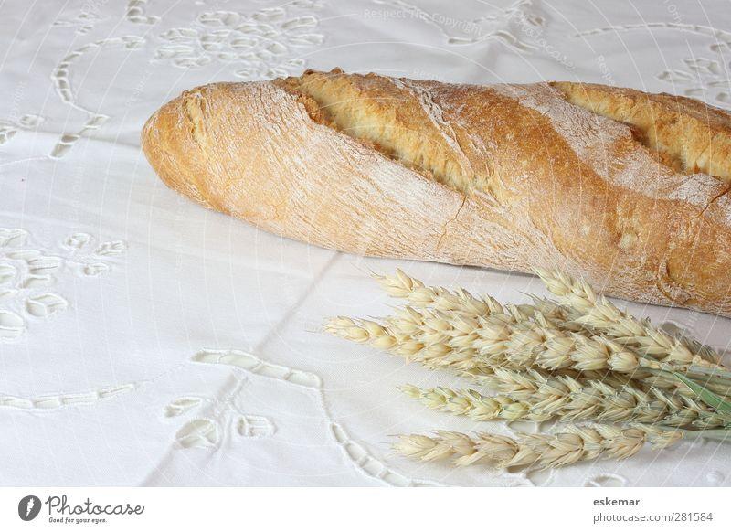 Baguette weiß Lebensmittel Tisch Getreide Frühstück Brot Abendessen Backwaren ländlich Weizen Tischwäsche Teigwaren Ähren rustikal organisch