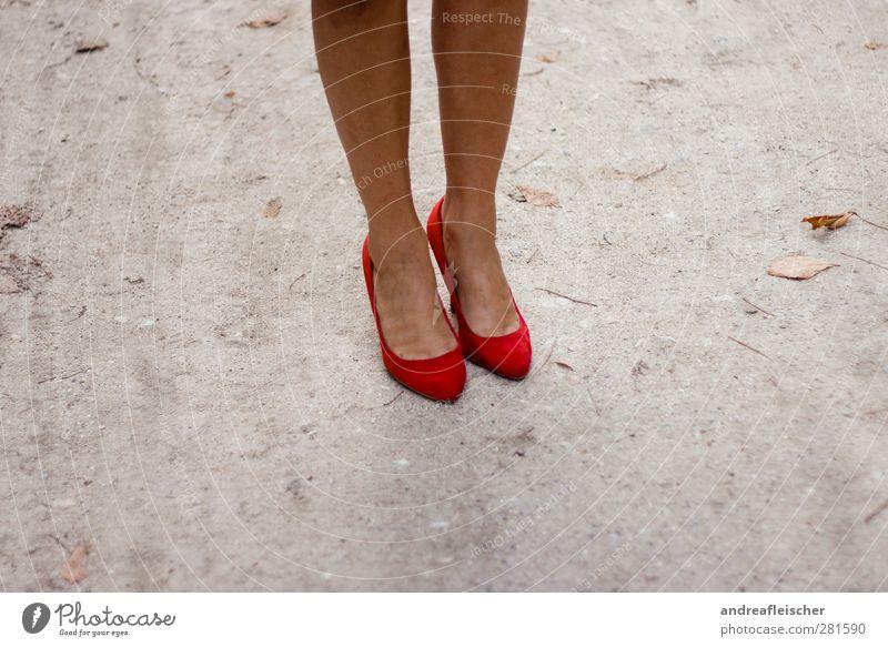 pariser boden. Mensch Frau Jugendliche schön Sommer Junge Frau rot 18-30 Jahre Erwachsene Herbst feminin Stil grau Beine Lifestyle Mode