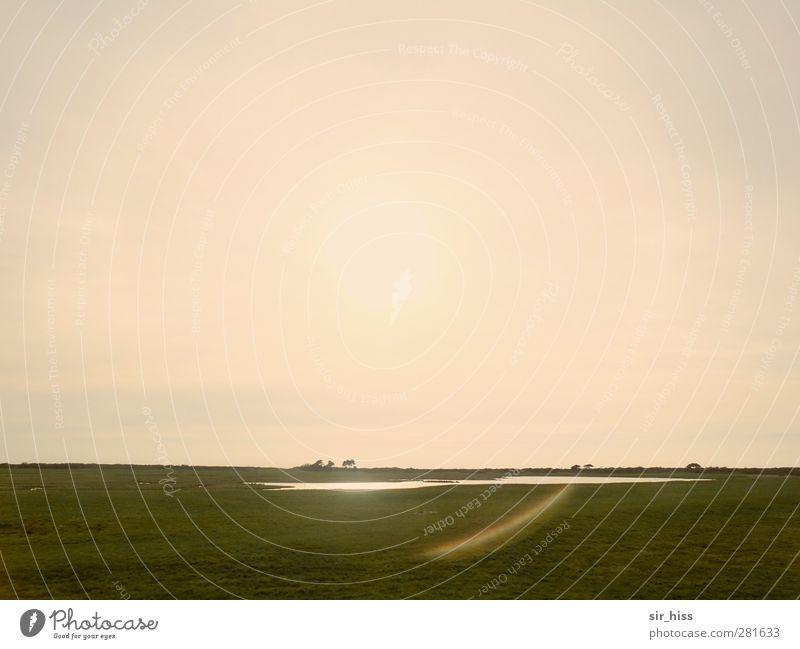 ... und dann ist da nur noch Stille Himmel (Jenseits) grün ruhig Ferne gelb Wiese Küste Sträucher Seeufer