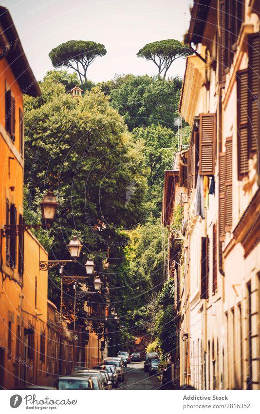 Schöne Straßenansicht von Rom, Italien Außenaufnahme Italienisch Ausflugsziel Stadt Farbe national Ferien & Urlaub & Reisen Aussicht Wahrzeichen Kultur