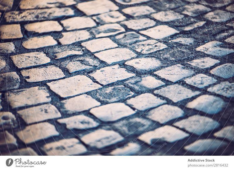 Traditionelle Kopfsteinpflasterstraße in Rom, Italien Straße Nahaufnahme alt altehrwürdig Detailaufnahme Europäer Außenaufnahme antik Europa Italienisch