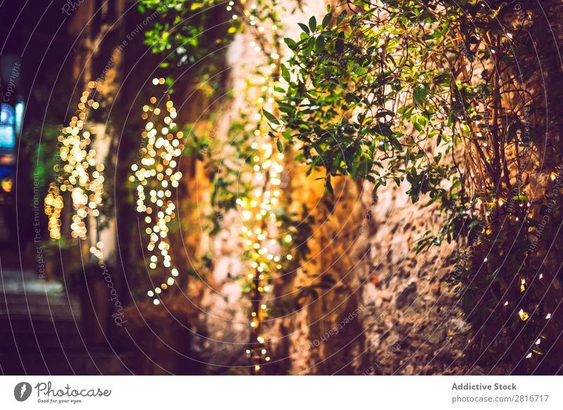 Dekoration Licht Weihnachtsfeier am Baum hängend, abstraktes Bild verschwommener unscharfer Hintergrund Garten Nacht Terrasse Außenaufnahme