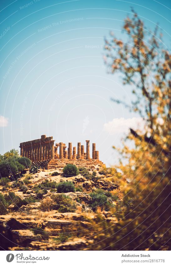 Blick auf das Tal der Tempel in Agrigento, Sizilien, Italien Griechen hellenistisch Stein Ferien & Urlaub & Reisen Sizilianer Wahrzeichen Säule dorisch