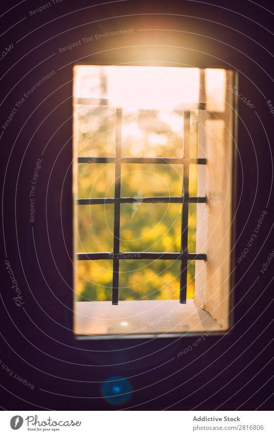 Ein Strahl Morgensonne in einem alten Fenster. Textur-Hintergrund Sonne Licht heimwärts durch Instagramm Lichtstrahl Sonnenlicht Blume glänzend Tag Blatt hell