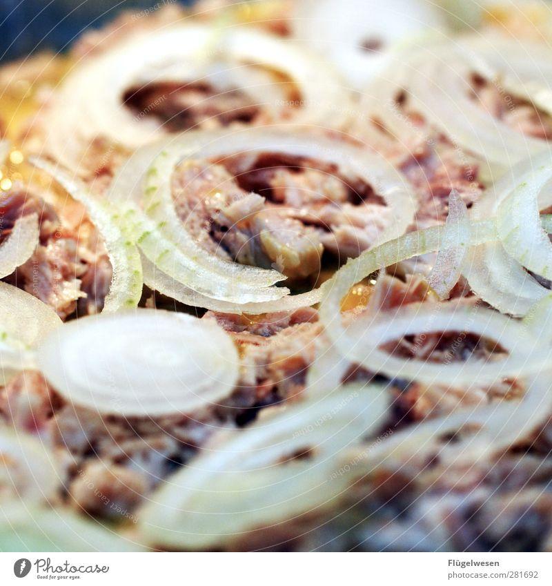 Tune Fish Lebensmittel Fisch Ernährung Essen Mikrowelle Herd & Backofen Erholung Gesundheit Gesunde Ernährung Speise Zwiebel Zwiebelringe Pizza Mais Thunfisch