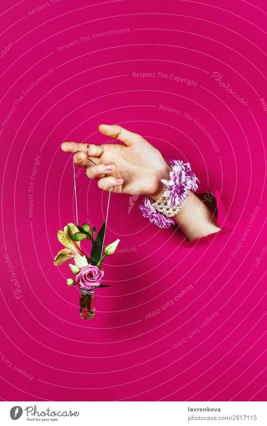 Frau schön Blume Frühling Mode rosa Design Papier Rose Blumenstrauß Beautyfotografie Blütenknospen Schmuck Flasche Entwurf aromatisch