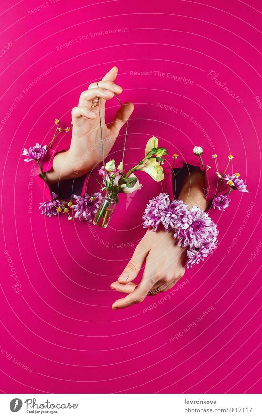 Frau schön Blume Frühling Mode rosa Papier Rose Blumenstrauß Beautyfotografie Blütenknospen Schmuck Flasche Entwurf aromatisch Halt