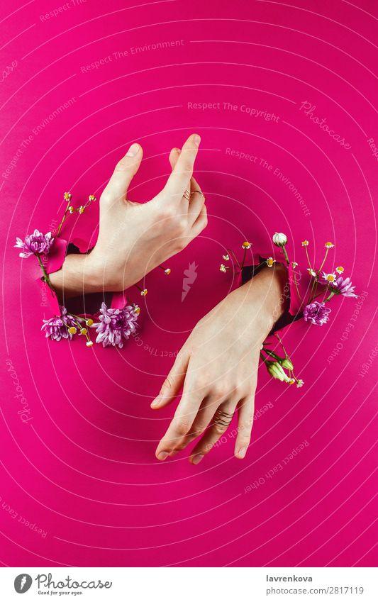 Frau schön Blume Frühling Mode rosa Papier Rose Blumenstrauß Beautyfotografie Blütenknospen Entwurf aromatisch Roséwein Glamour Armband