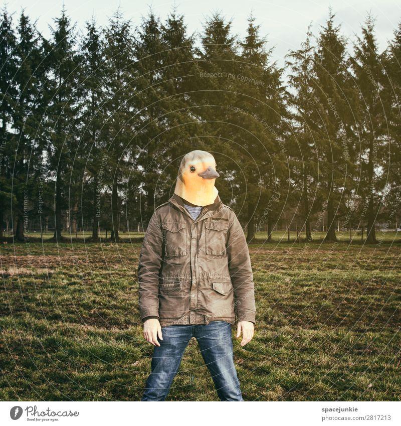 Like a bird. Mensch maskulin Junger Mann Jugendliche 1 30-45 Jahre Erwachsene Umwelt Natur Landschaft Frühling Gras Garten Park Feld Wald beobachten
