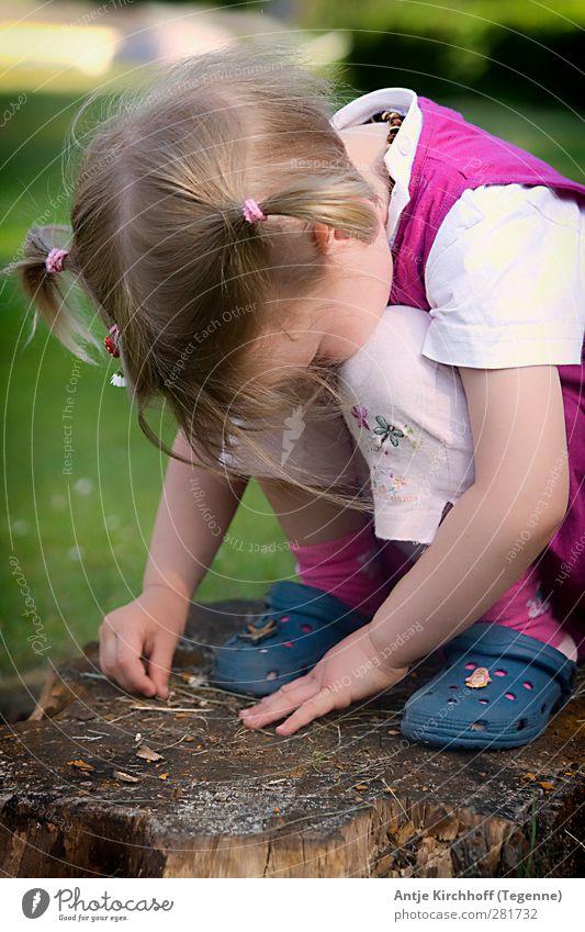 Verzückt feminin Kind Mädchen Schwester Kindheit 1 Mensch 3-8 Jahre T-Shirt Kleid brünett blond Zopf hocken lernen niedlich blau rosa Gefühle Zufriedenheit