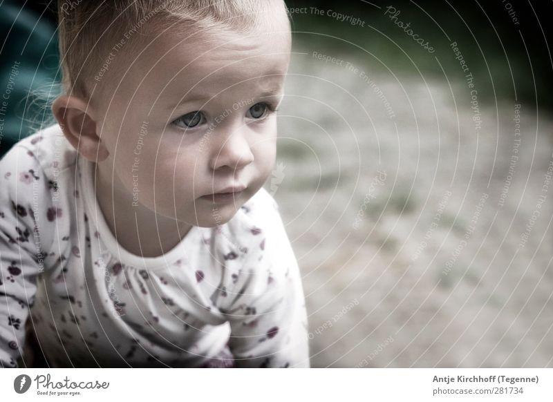 Neugier Mensch Kind Mädchen Gesicht Gefühle feminin Bewegung klein Kopf Kindheit Baby Lächeln Hoffnung Kleinkind Geborgenheit krabbeln