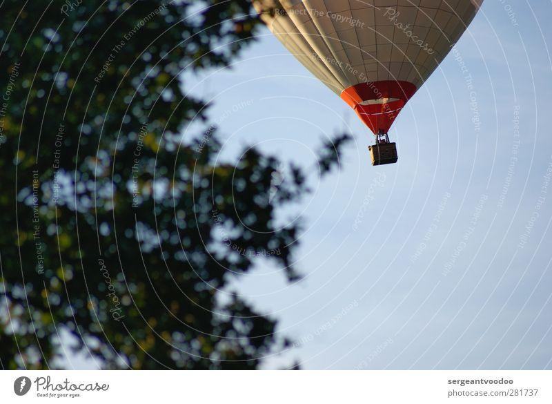 Ballonfahrt ab 159,- EUR Himmel Ferien & Urlaub & Reisen Pflanze Baum ruhig Erholung Ferne Sport oben außergewöhnlich fliegen frei Luftverkehr Ausflug