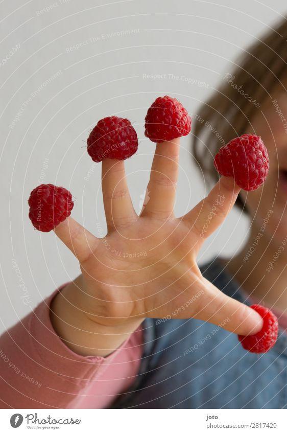 Himbeeren Lebensmittel Frucht Süßwaren Essen Fingerfood Gesundheit Gesunde Ernährung Zufriedenheit Sommer Kind Kindheit Hand 3-8 Jahre frech frisch lecker