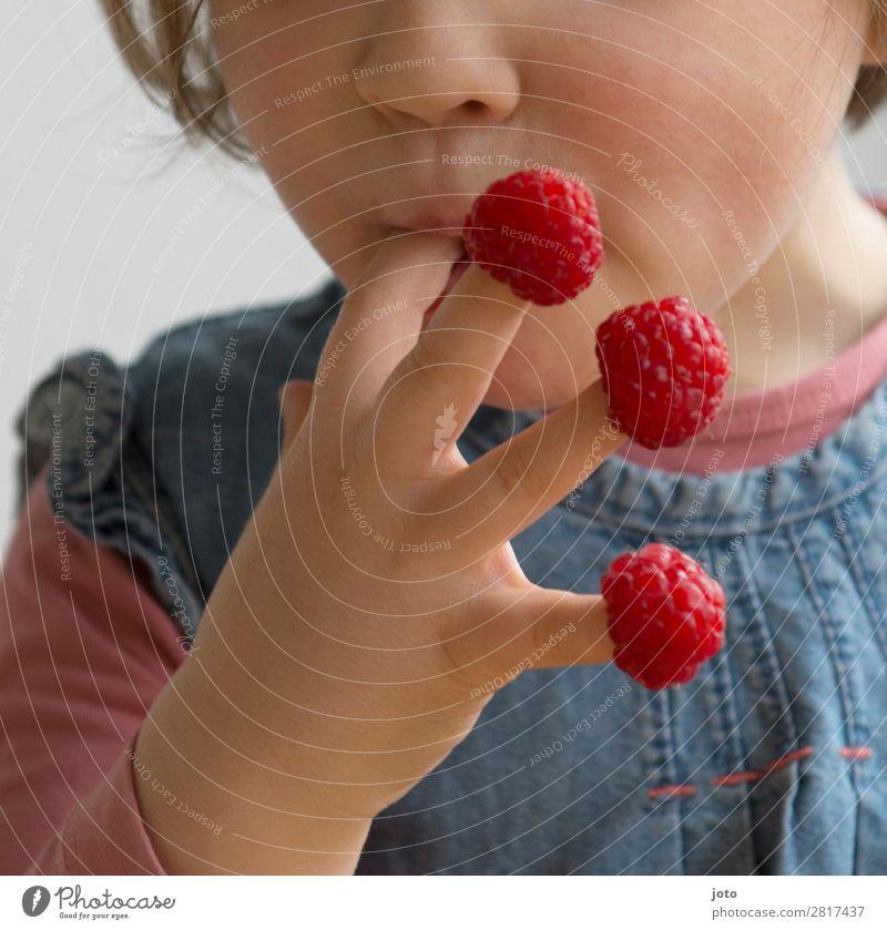 Himbeeren naschen Kind Ferien & Urlaub & Reisen Sommer rot Hand Gesundheit Lebensmittel Essen natürlich Frucht Zufriedenheit Ernährung süß frisch Kindheit