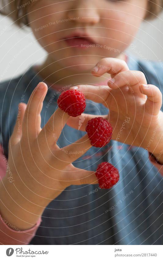 rechnen Kind Gesunde Ernährung Sommer rot Hand Speise Freude Gesundheit Lebensmittel Essen natürlich Frucht Zufriedenheit süß frisch Kindheit