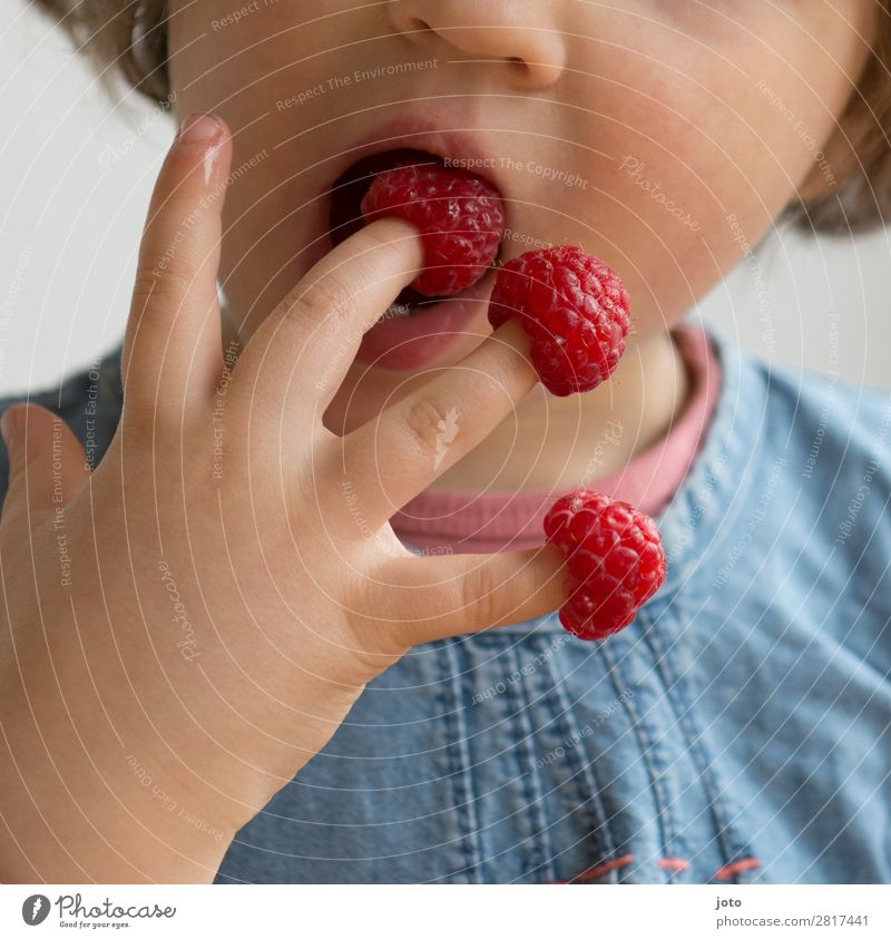 Haps Kind Ferien & Urlaub & Reisen Gesunde Ernährung Sommer rot Hand Speise Gesundheit Lebensmittel Essen natürlich Frucht Zufriedenheit süß frisch Kindheit