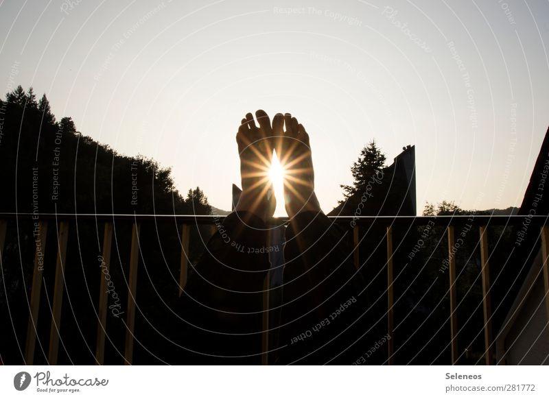 Füßehochtag Wohnung Mensch Fuß 1 Umwelt Natur Himmel Wolkenloser Himmel Horizont Schönes Wetter Pflanze Baum Erholung glänzend genießen leuchten sitzen Balkon