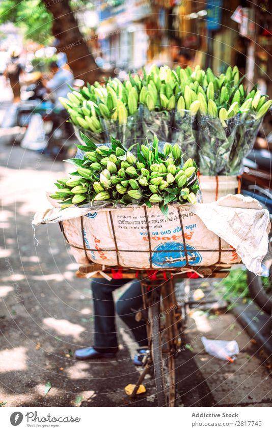 Hanoi, Vietnam - 2. Mai 2015: Vietnamesische Straßenmarktfrau verkauft Asien asiatisch Gleichgewicht Korb Fahrrad Business tragen Kategorie Großstadt Gewerbe