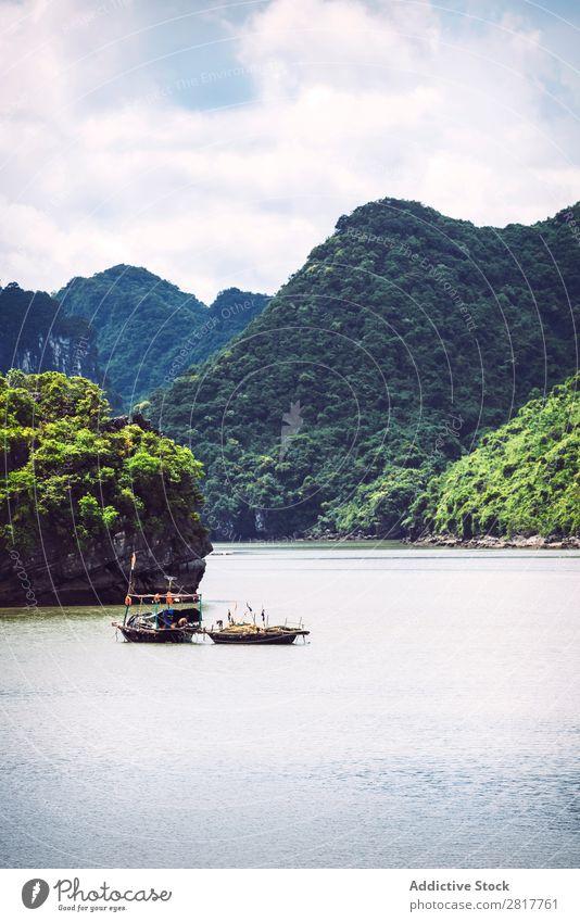 Malerische Meereslandschaft. Ha Long Bay, Vietnam Halong Bay Bucht Asien Insel Wahrzeichen blau asiatisch Kreuzfahrt grün Baum Süden Vietnamesen Wasserfahrzeug