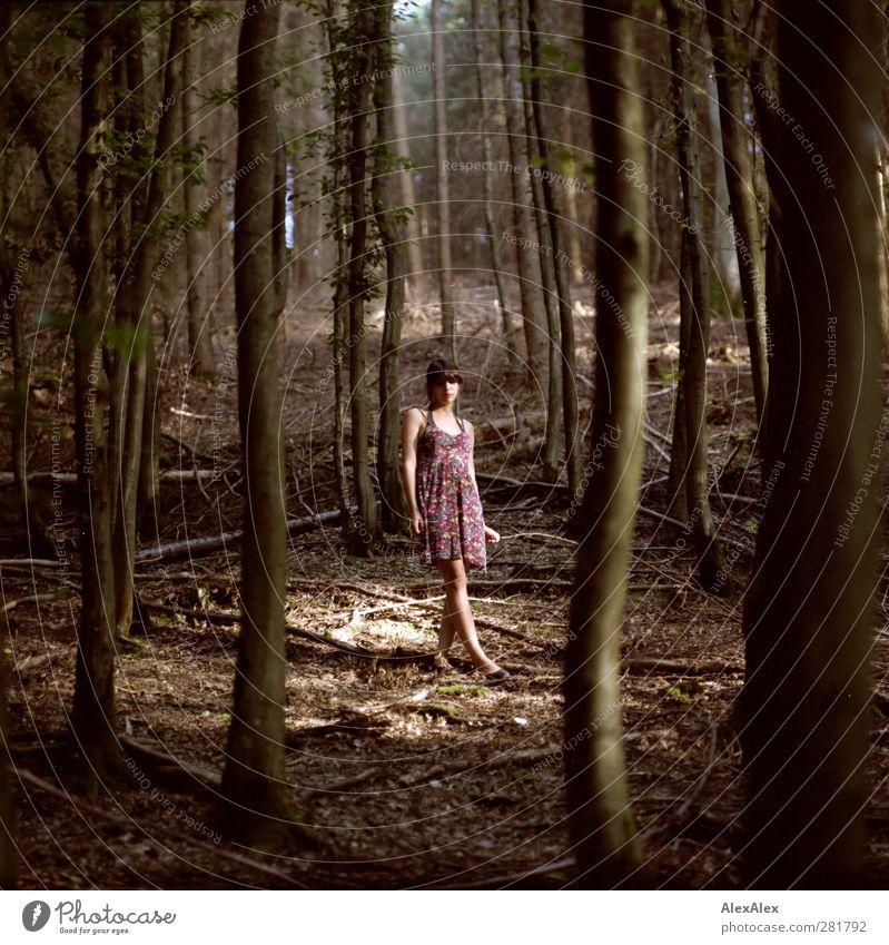 Liliy's Lichtung Mensch Jugendliche schön Sommer Baum Blatt Erwachsene Wald Erholung Leben Junge Frau Erotik Spielen Holz Beine 18-30 Jahre