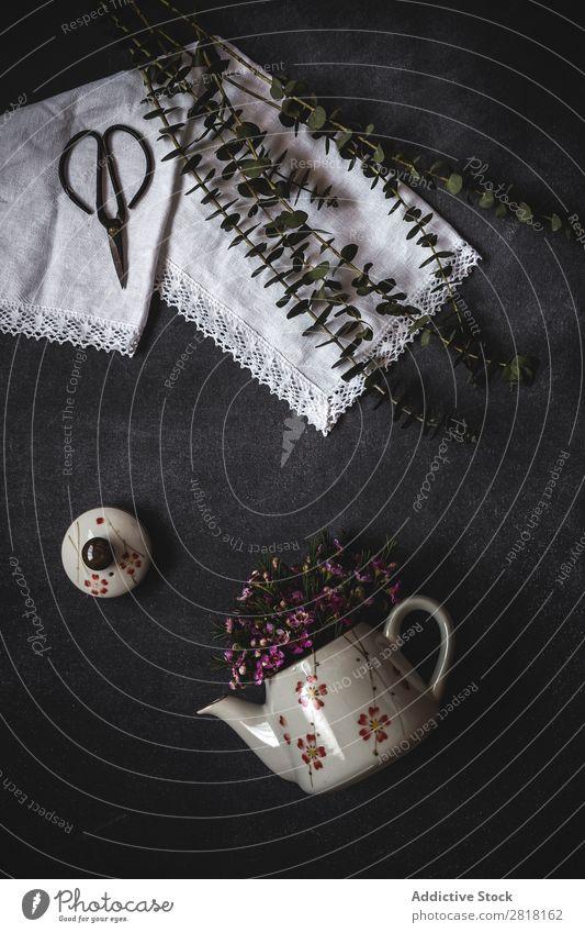 Blumen auf schwarzem Hintergrund. Flache Verlegung, Draufsicht Hintergrundbild Liebe Konsistenz Schere Blütenblatt Geschenk Valentinsgruß natürlich geblümt