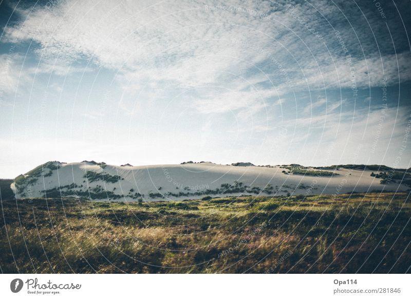 Düne Umwelt Natur Landschaft Pflanze Tier Himmel Wolken Sonne Sonnenaufgang Sonnenuntergang Sonnenlicht Sommer Schönes Wetter Gras Sträucher Küste Strand