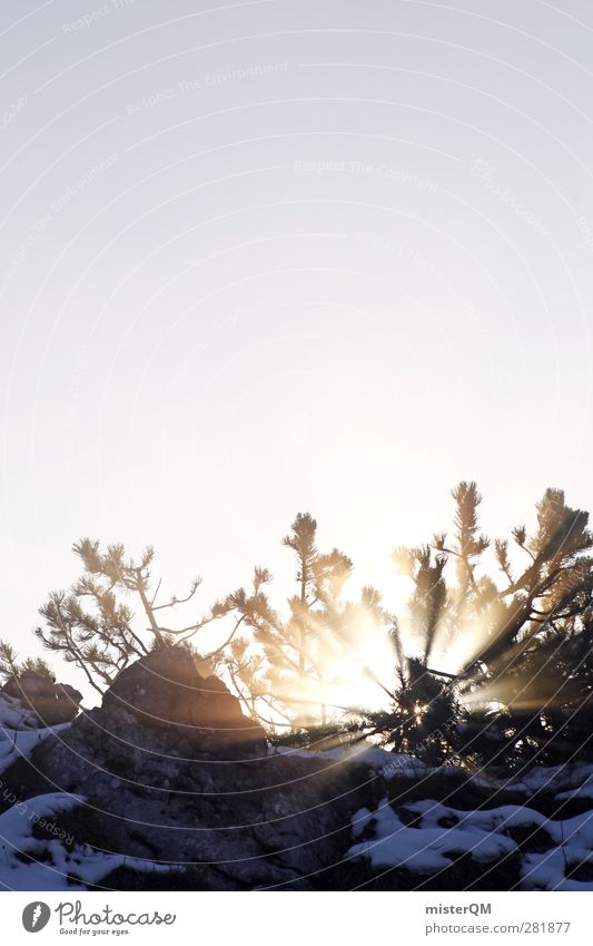 Morgenstund. Kunst ästhetisch Licht Lichtspiel Lichterscheinung Lichtschein Lichtbrechung Lichtstrahl Lichteinfall Lichtkegel Sonnenlicht Sonnenstrahlen