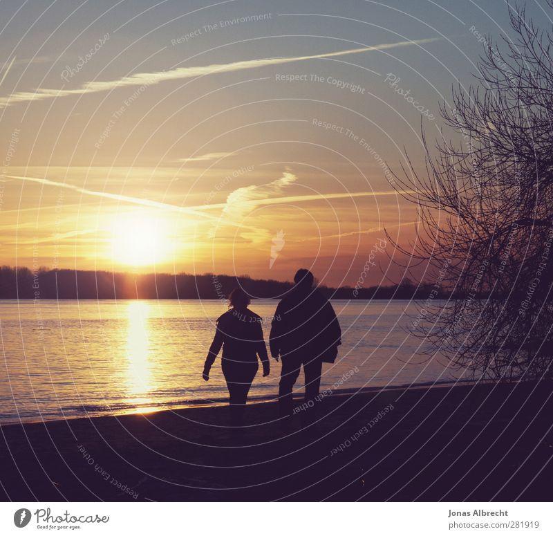 Strand Spaziergang Mensch Jugendliche Ferien & Urlaub & Reisen Sommer Sonne Meer Strand Erwachsene Erholung Ferne Leben feminin Junge Frau Bewegung Freiheit Junger Mann