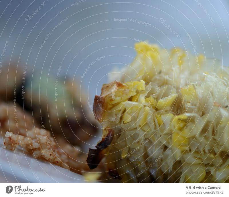 abgenagt ... Lebensmittel Maiskolben Ernährung Bioprodukte Vegetarische Ernährung Diät Gesundheit aufgegessen Grillen Gemüse Gedeckte Farben Außenaufnahme