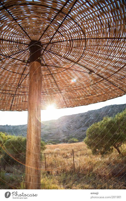 Rhodos Natur Ferien & Urlaub & Reisen Sommer Sonne Landschaft Umwelt Wärme hell Schönes Wetter heiß Sonnenschirm
